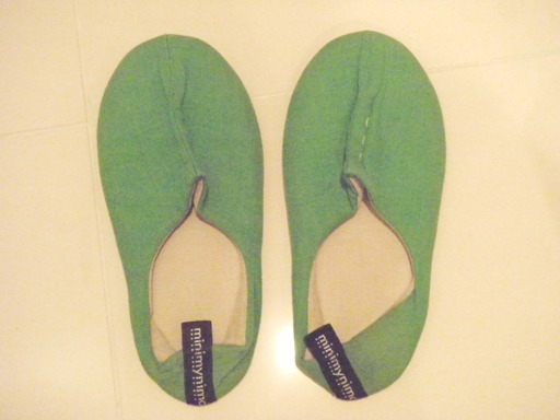 green-slipper.JPG